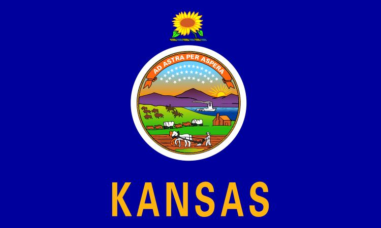 Gallant state flags coloring idaho montana free flags for Kansas state flag coloring page